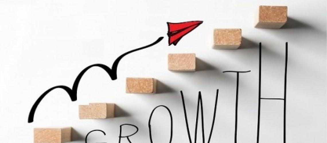 omzet groei strategie